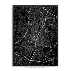 Austin TX City Street Map Black Poster